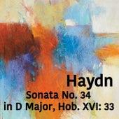 Play & Download Haydn Sonata No. 34 in D Major, Hob. XVI: 33 by Joseph Alenin | Napster