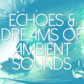 Echoes & Dreams of Ambient Sounds by Various Artists