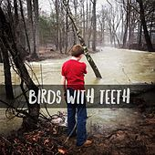 Play & Download Birds with Teeth by The Birds | Napster