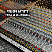 Play & Download Voices of the Unsigned by Various Artists | Napster
