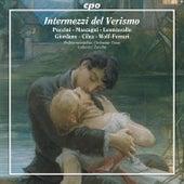 Play & Download Intermezzi del verismo by Philharmonisches Orchester Graz | Napster