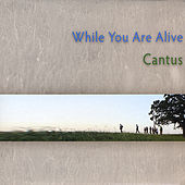 Play & Download While You Are Alive by Cantus | Napster