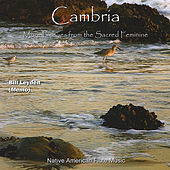 Play & Download Cambria by Memo | Napster