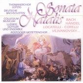 Sonate Natale von Various Artists