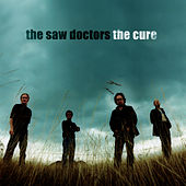 Play & Download The Cure by The Saw Doctors | Napster
