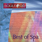 Play & Download Best of Spa by Various Artists | Napster