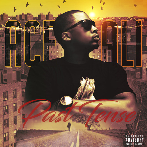 Past Tense by Ace Ali
