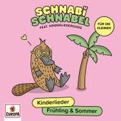 Liederzwerge - Lieder aus dem Musik-Kurs, Vol. 2: Frühling/Sommer von Lena, Felix & die Kita-Kids
