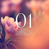 Play & Download The Ambient Project, Vol. 1 by Various Artists | Napster