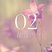 The Ambient Project, Vol. 2 by Various Artists