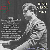 Play & Download Dino Ciani, Vol. 2 by Dino Ciani | Napster