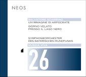 Musica viva, Vol. 26: Salvatore Sciarrino by Various Artists