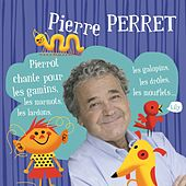 Le zizi by Pierre Perret