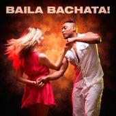 Baila Bachata! by Various Artists