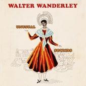 Unusual Sounds de Walter Wanderley