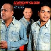 Play & Download Te Vas by Revolucion Salsera | Napster