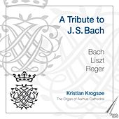 A Tribute to J. S. Bach by Kristian Krogsgaard