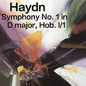 Play & Download Haydn Symphony No. 1 in D Major, Hob. I/1 by The St Petra Russian Symphony Orchestra | Napster