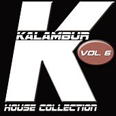 Play & Download Kalambur House Collection, Vol. 6 by The Falcon | Napster