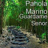 Guardame Senor by Pahola Marino