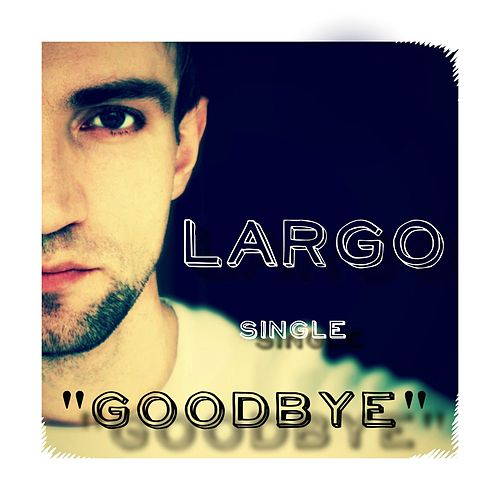 Goodbye by Largo
