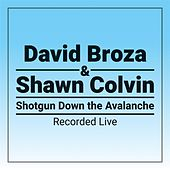 Shotgun Down The Avalanche by David Broza