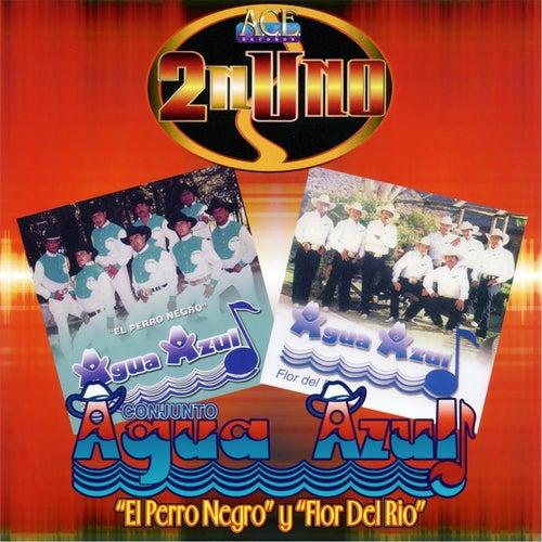Play & Download El Perro Negro Y Flor del Rio by Conjunto Agua Azul (1) | Napster