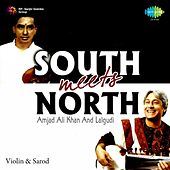 South Meets North by Various Artists