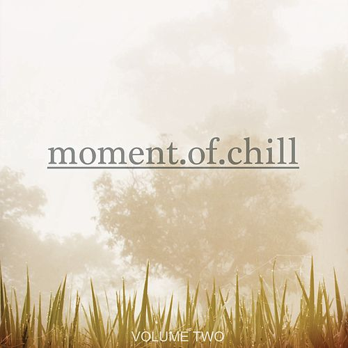 Moment Of Chill, Vol. 2 (Finest Selection Of Music To Chill) by Various Artists