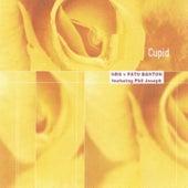 Cupid (feat. Phil Joseph) by Pato Banton