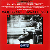Play & Download Johann Strauss Festkonzert by Wiener Symphoniker | Napster