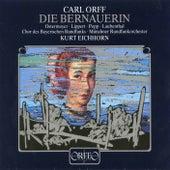 Play & Download Orff: Die Bernauerin by Gerhart Lippert | Napster