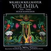 Killmayer: Yolimba by Various Artists