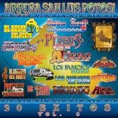 Play & Download Arriba San Luis Potosi, Vol. 8 by Various Artists | Napster