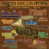 Arrba San Luis Potosi, Vol. 7 by Various Artists