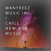 Chill New Age Music by Various Artists