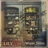 Lily de Arzum Simay