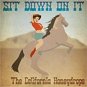 Play & Download Sit Down on It by The California Honeydrops | Napster