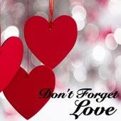 Don't Forget Love von Various Artists