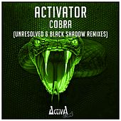 Play & Download Cobra (The Remixes) by Activator | Napster