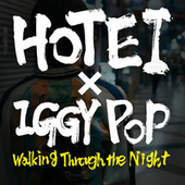 Walking Through The Night by Tomoyasu Hotei