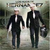 Play & Download Necesito Que Vuelva by Los Hijos De Hernández | Napster