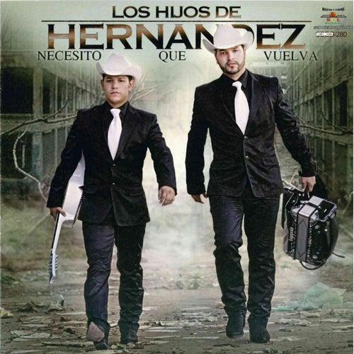 Necesito Que Vuelva by Los Hijos De Hernández