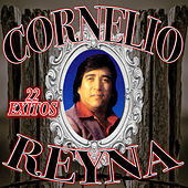 Play & Download 22 Exitos by Cornelio Reyna | Napster