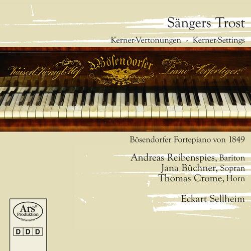 Sängers Trost: Kerner Settings by Andreas Reibenspies