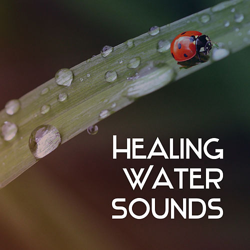 Play & Download Healing Water Sounds – Nature Relaxation, Soothing Waves, Calm Mind, Peaceful Sounds by Echoes of Nature | Napster