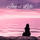 Play & Download Joy of Life - Moments of Happiness, Greatest Road, Mute Interiors, Great Mind by Meditation & Stress Relief Therapy | Napster