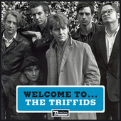 Welcome to the Triffids by Triffids