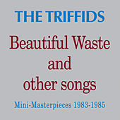 Beautiful Waste and Other Songs - Mini Masterpieces 1983 - 1985 by Triffids