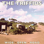 Play & Download Wide Open Road by Triffids | Napster